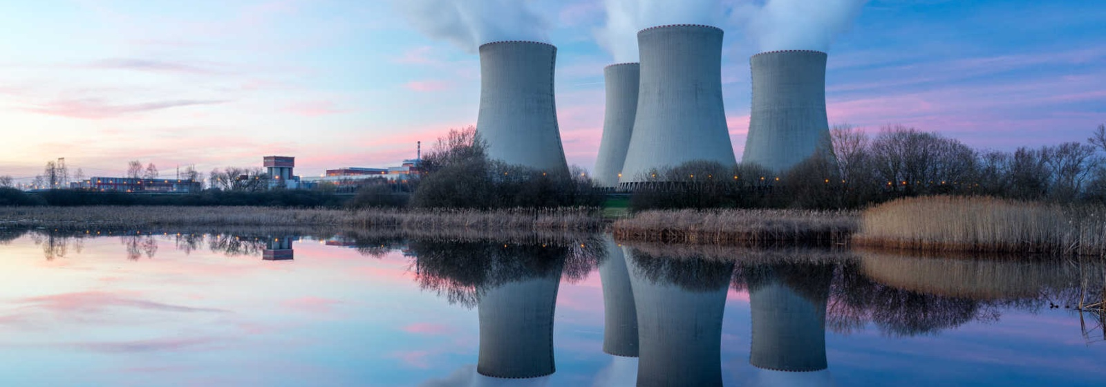 Did Warren, Sanders, and Trump Find More Common Ground on Nuclear Energy Policy?